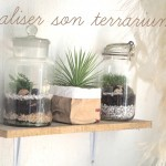 Comment fabriquer son terrarium