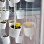 La tasse à café en plastique: comment la réutiliser?