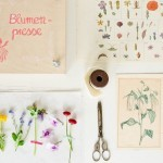 Fabriquez une presse à fleur