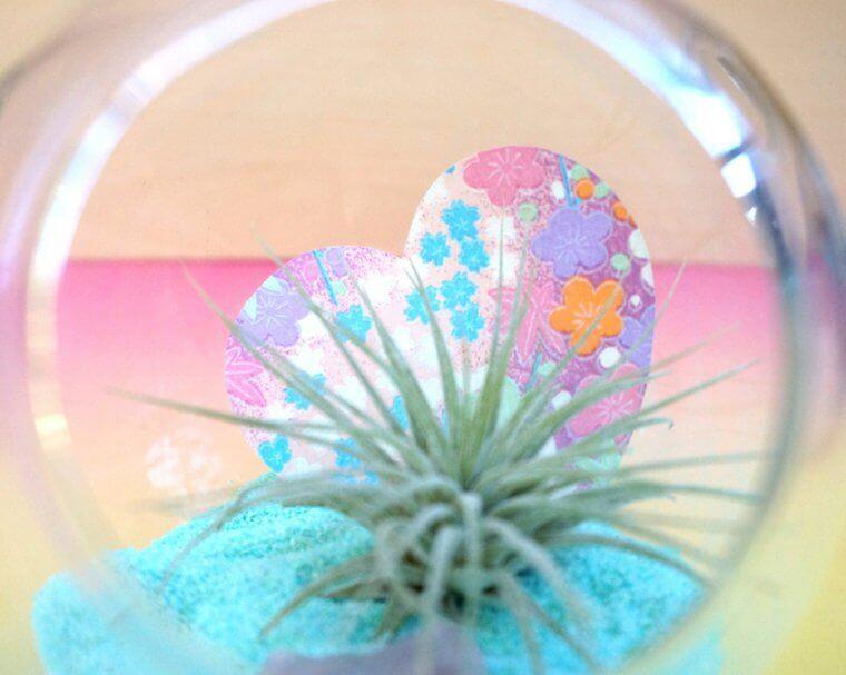 plante-cadeau-saint-valentin-vase-suspension-diy-idee