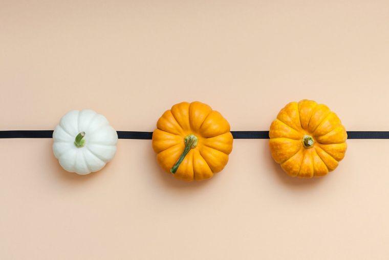 deco-automne-a-faire-soi-meme-avec-mini-citrouilles