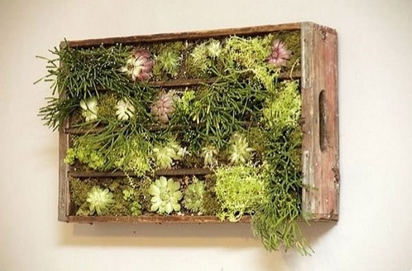 mur végétal caisse bois faire