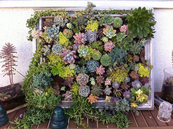 mur végétal extérieur fabriquer