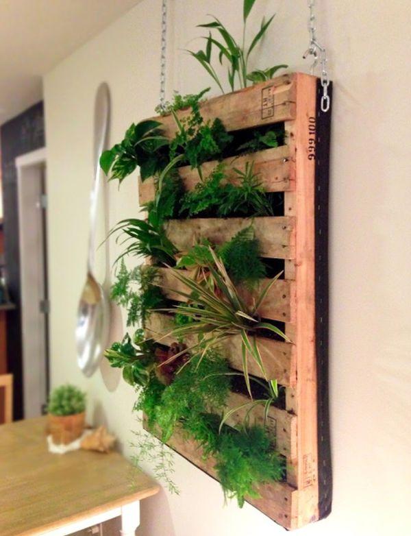 mur végétal palette bois intérieur