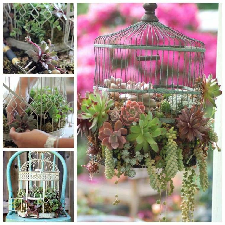 cage oiseaux pots de fleurs