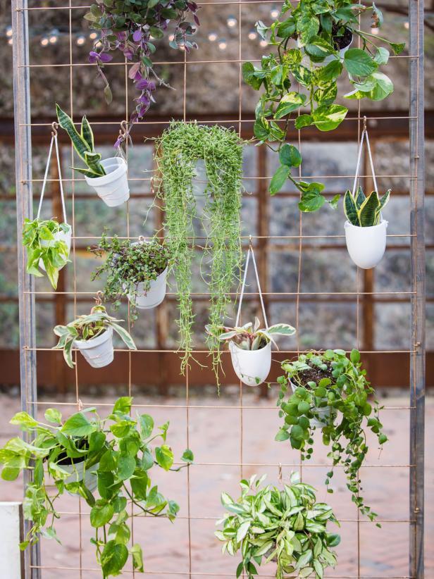 deco-plantes-diy-jardin
