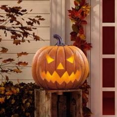 Comment éviter que vos citrouilles ne pourrissent à Halloween