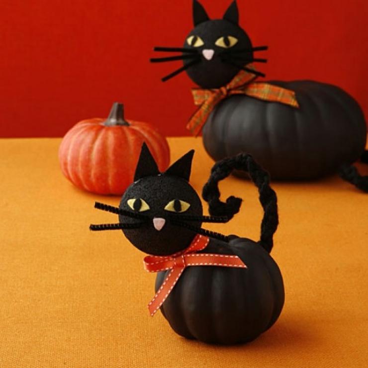 halloween-chat-citrouille