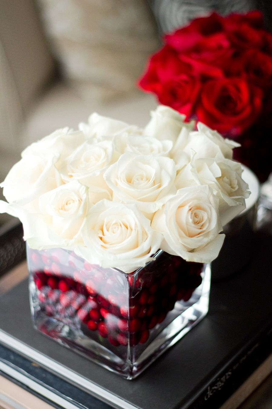 Roses d'hiver