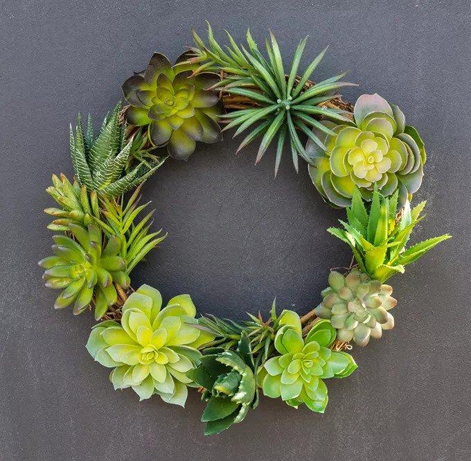 Couronne Succulente DIY