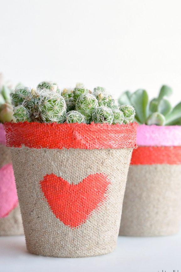 Succulentes Saint-Valentin