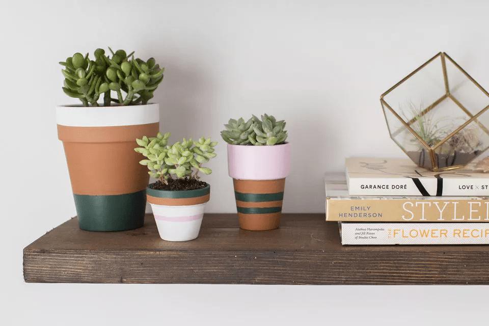 Pots de plantation peints sur une étagère