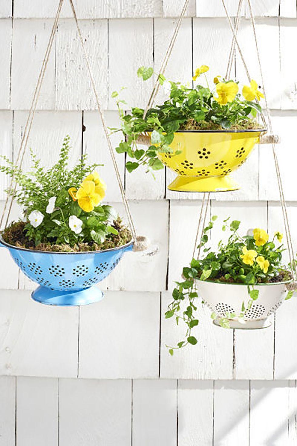 Jardinière en forme de passoire convertie