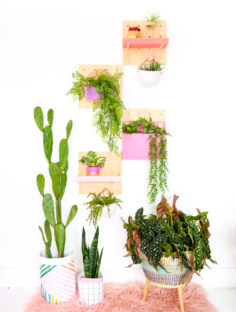 Mur végétal vivant en carton perforé